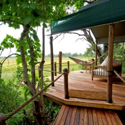 Stanleys Camp hammock