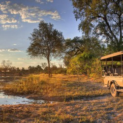 Khwai River Lodge game drive