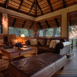 Camp Moremi Lounge