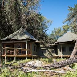 Xigera Camp Family tent by Dana Allen