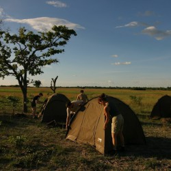 Buffalo Safari tents