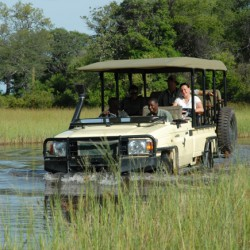 Baines Camp game drive