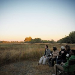 Moremi Camping safari sundowners