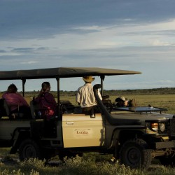Miracle Rivers safari game drive
